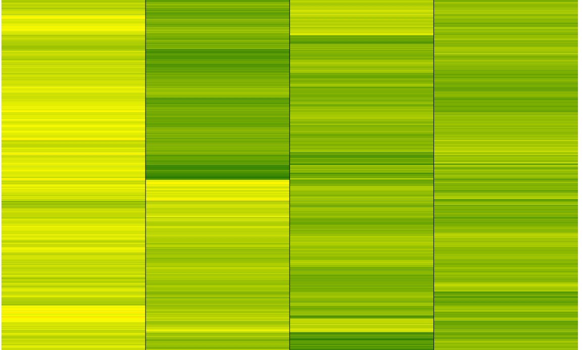 Heatmaps in R, two ways — J  Harry Caufield