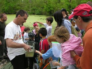Wetland Workshop - Environmental Education