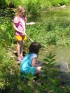 Environmental Education - Wetlands
