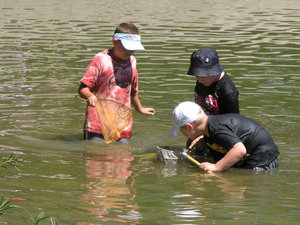 Wetland Exploration - Environmental Education