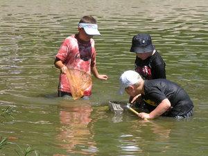 Wetland Exploration - Environmental Education