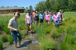 Environmental Education - Teacher Training