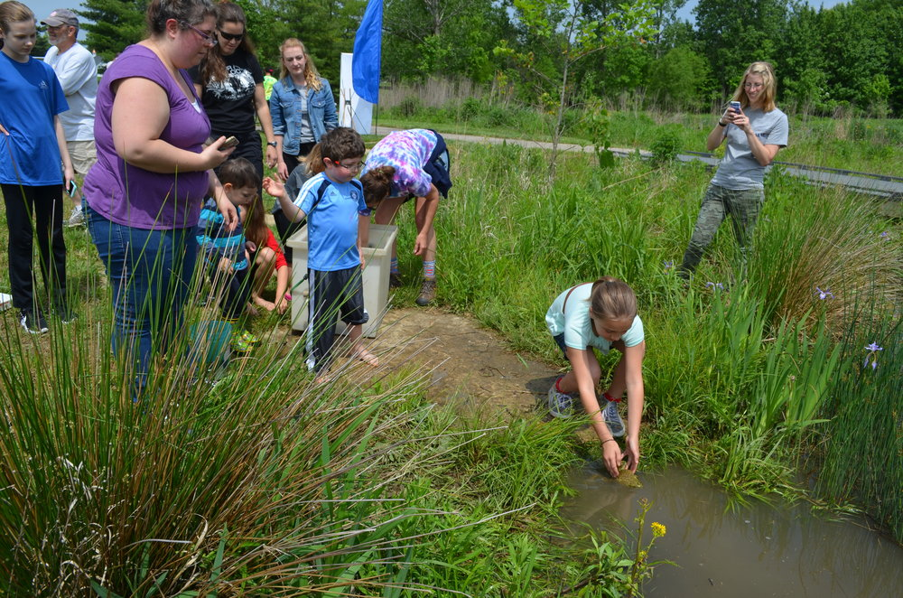 MADScientistAssoc-WetlandWorkshop2017-24