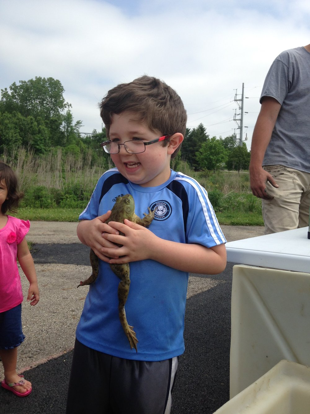 MADScientistAssoc-WetlandWorkshop2017-36_Bullfrog