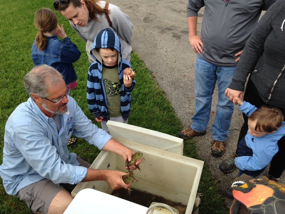 MADScientistAssoc-WetlandWorkshop2017-28_Frogs