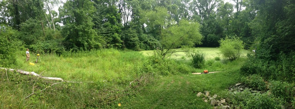 Greenacres Edu Wetland panorama before photo.JPG