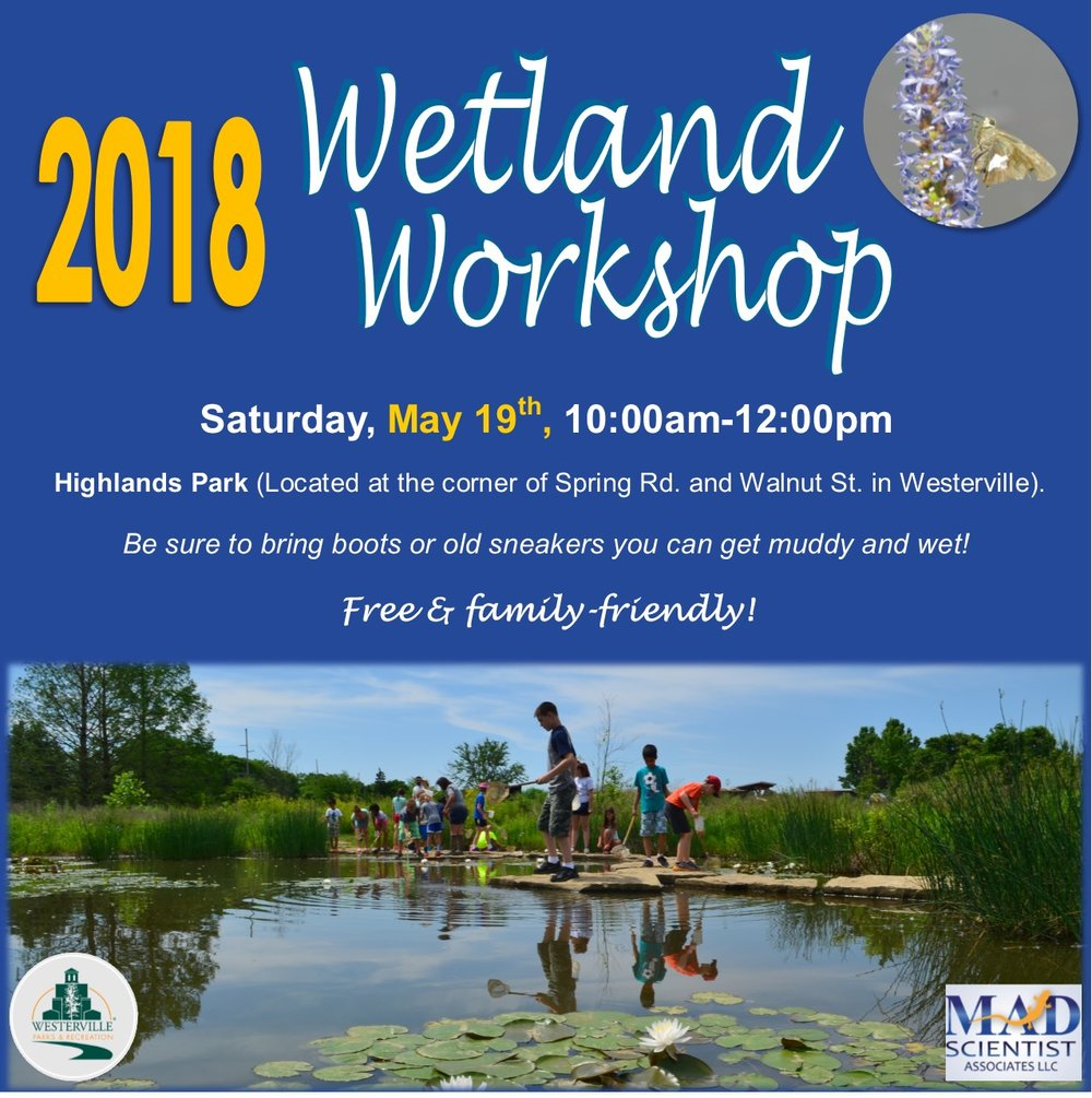 Wetland Workshop Ad.jpg