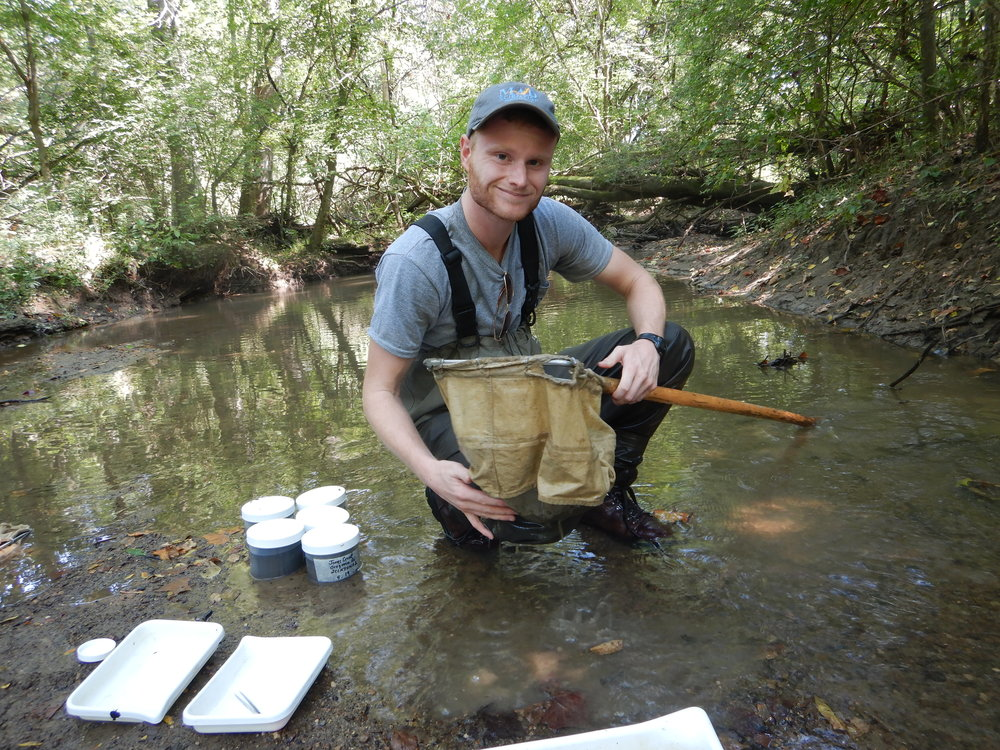 Collecting stream invertebrate samples.