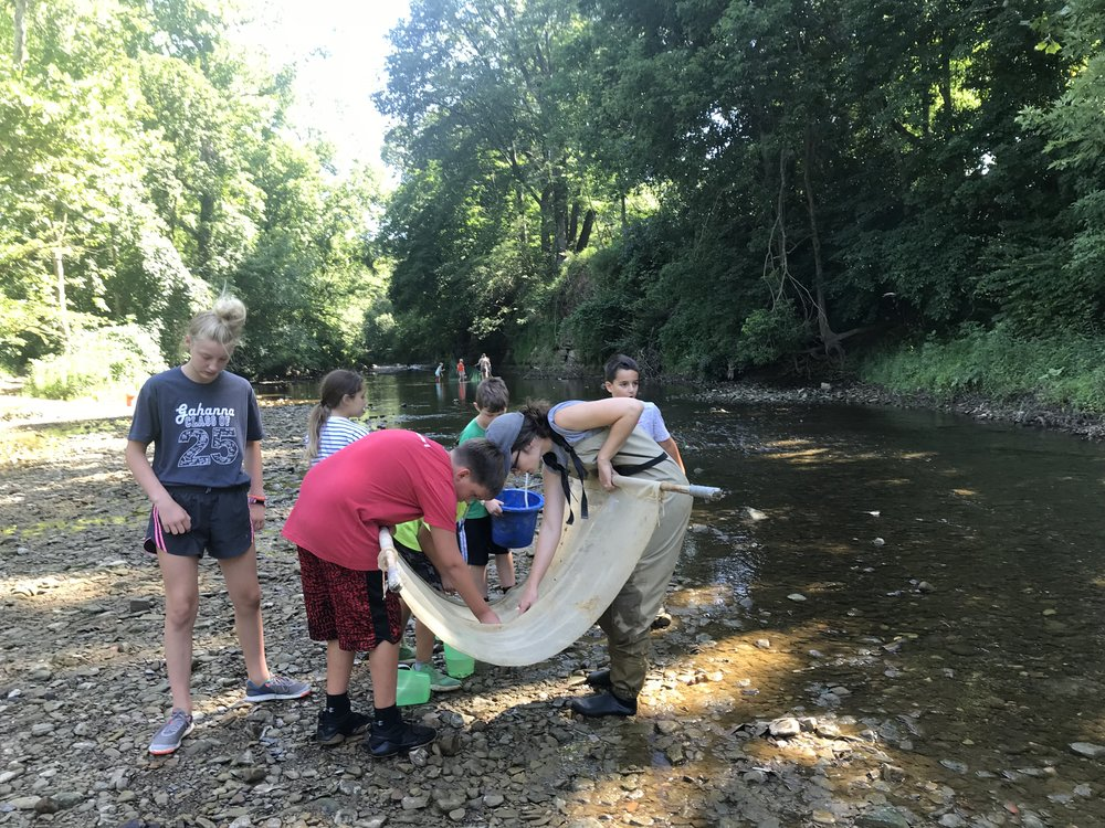 Exploring Rocky Fork Creek