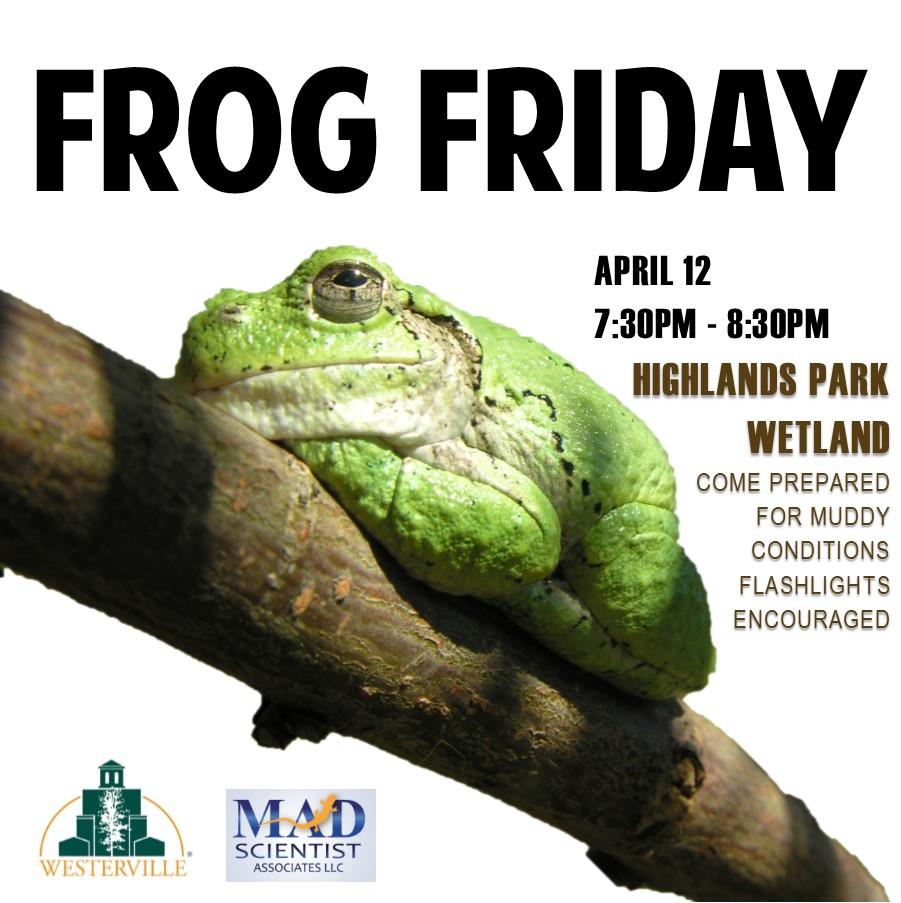 Frog Friday April 12.jpg