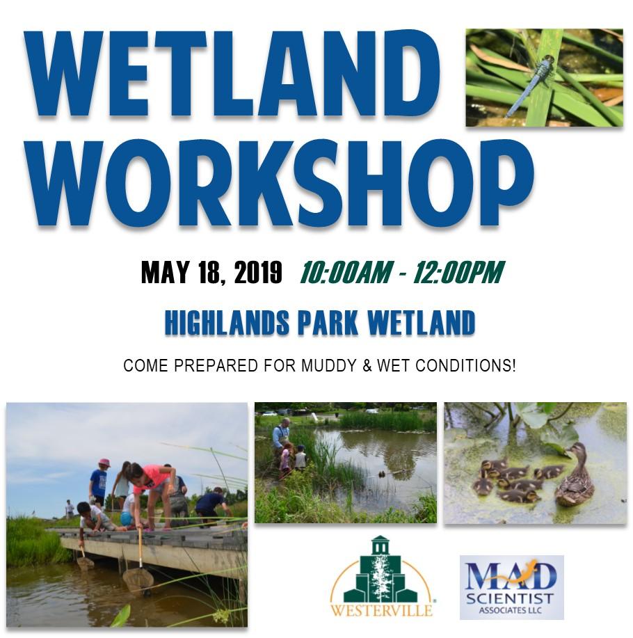 Wetland Workshop 2019 Ad.jpg