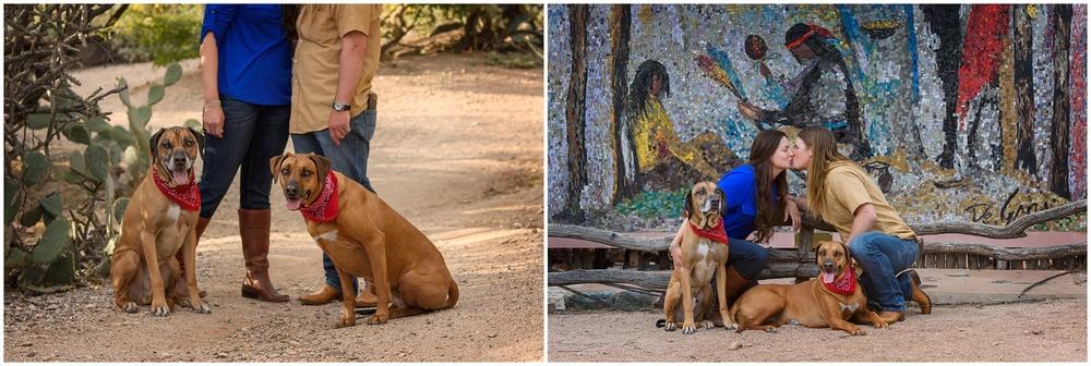 Tucson Pet Photography