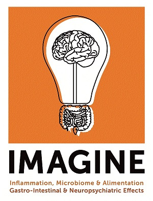 IMAGINE_PrimaryLogo600x600-1.jpg