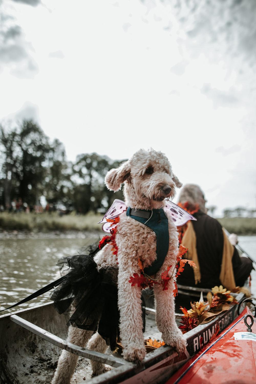 canoeparade-6291 (1).jpg