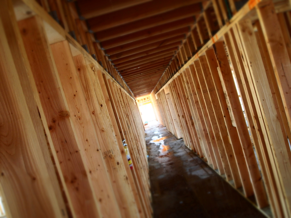 Williams Point - Waukee, IA / corridor framing