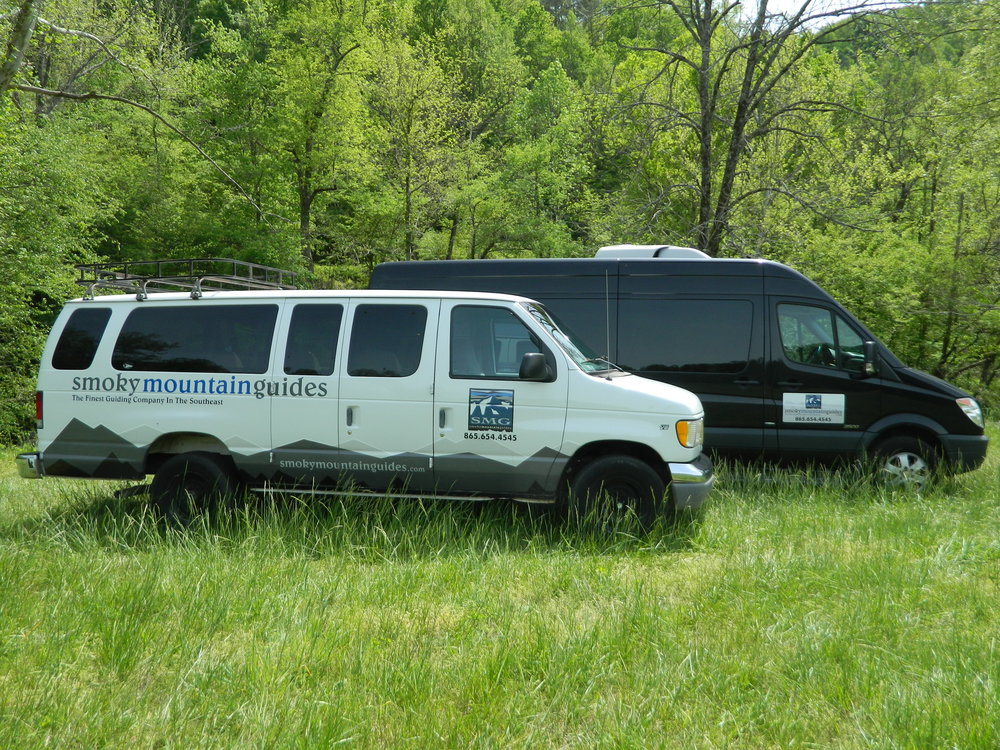 Experience the Great Smoky Mountain National Park with our unique tours, trips and corporate services.