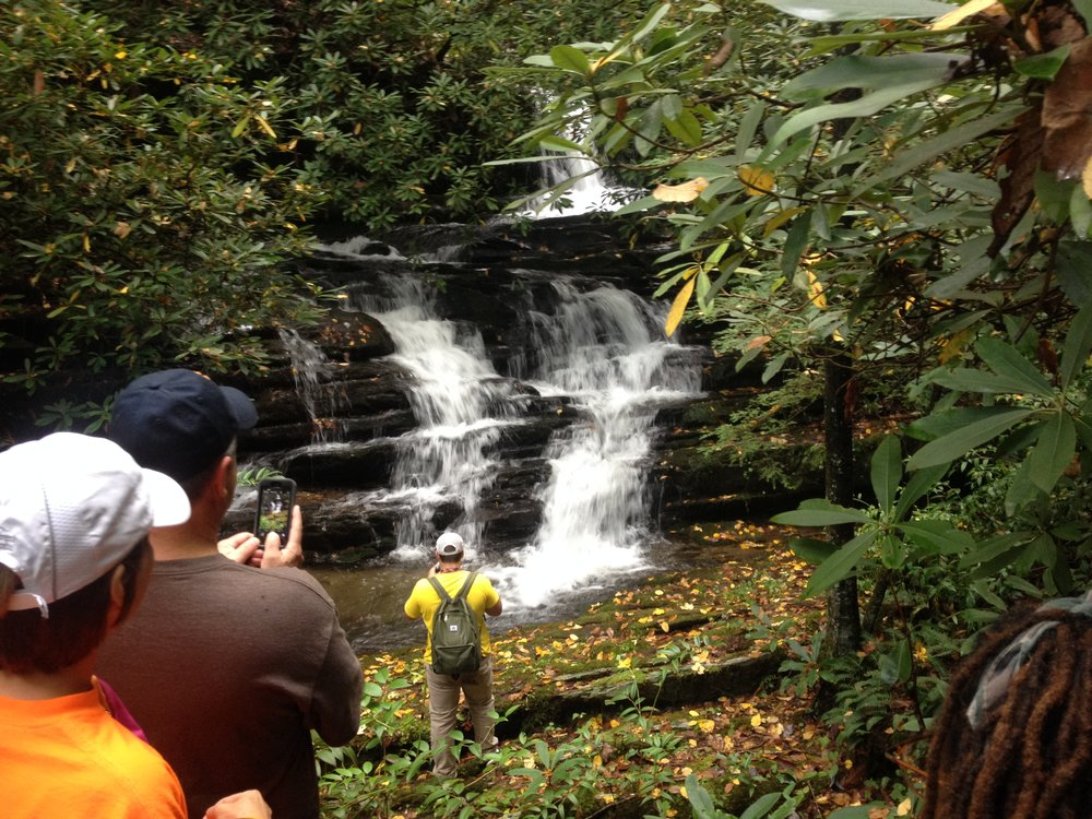 Guided hikes & walks - The best way to experience the smoky mountains is to get on the trails.  Our local and naturalist guides open your eyes to the Greatness of the Smoky Mountains!