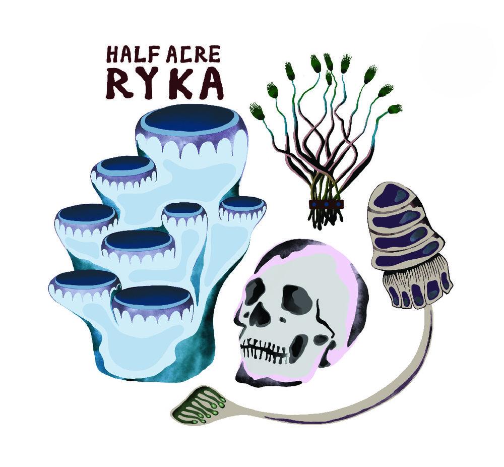 ryka_print-01.jpg