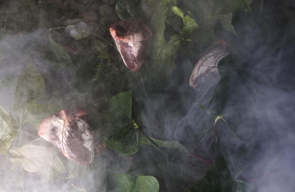 Hearts in Fog