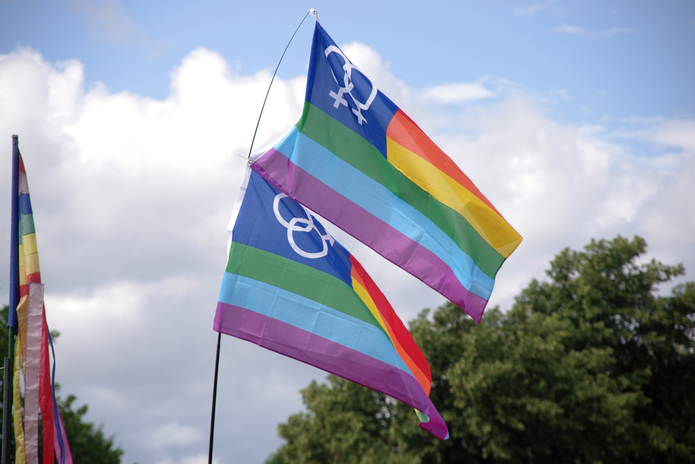 The bisexual flag, pictured above, was created by Michael Page, a co-founder of Bisexual Awareness Week. (Matt Buck/Flickr)