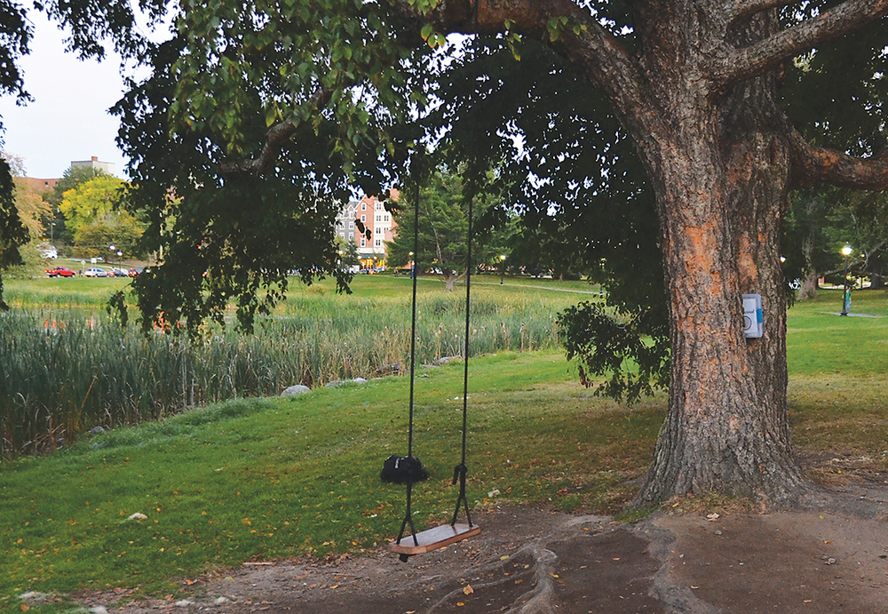 In this photo, the swing near Mirror Lake on the UConn campus is pictured. A new journal placed by Counseling and Mental Health Services (CMHS) near the swing at Mirror Lake has prompted many UConn students to open up and share their milestones, struggles and personal thoughts. (Amar Batra/The Daily Campus)