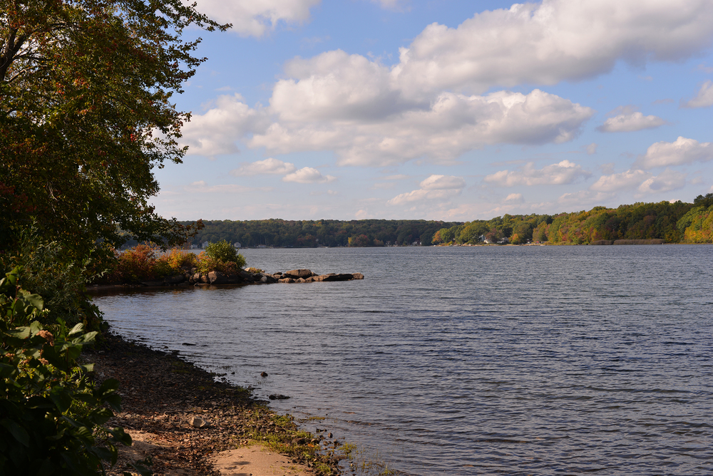 In this photo, Coventry Lake is pictured in Storrs, Connecticut. Invasive hydrilla found in the lake could reduce the area's recreational value for boaters and other residents, UConn professor Don Les said. (Ashley Maher/The Daily Campus)