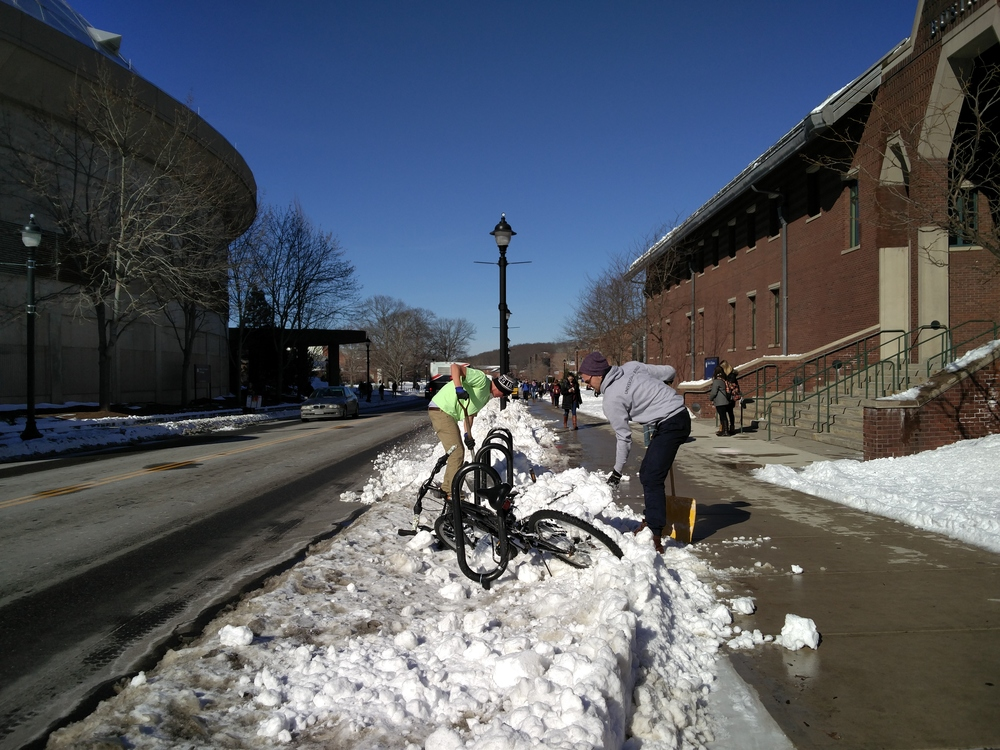 Students shovel post-Storm Jonas. (Jason Jiang/Daily Campus)