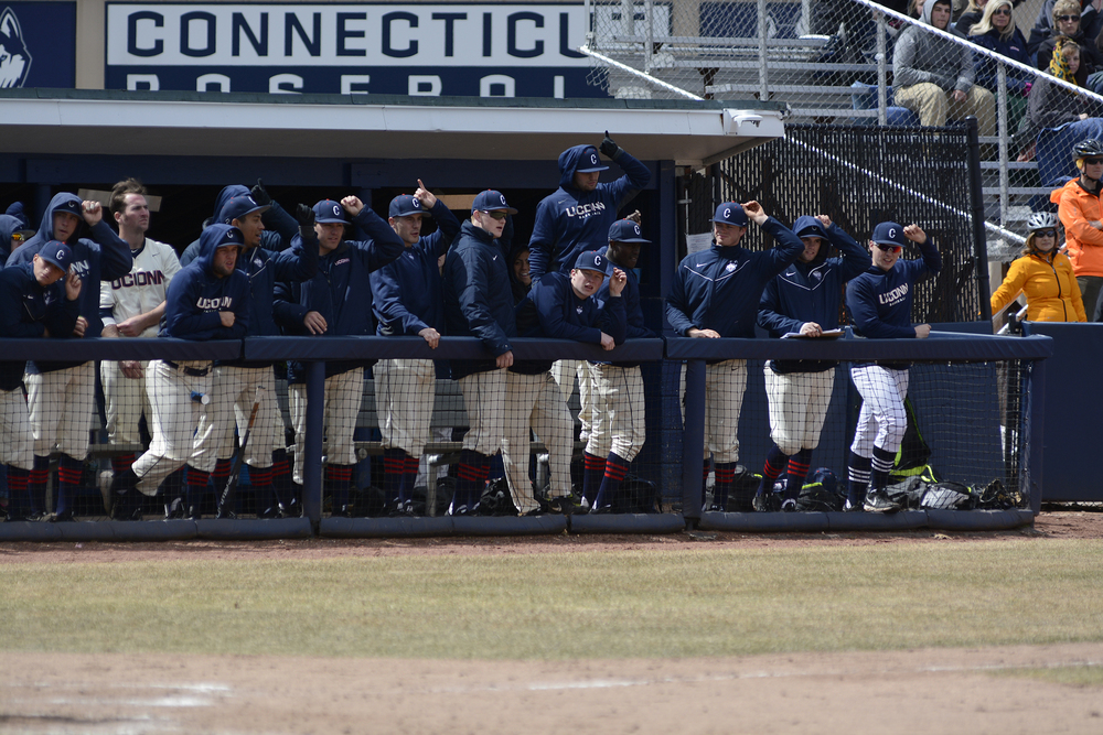 The UConn baseball team celebrates during a game last season. Over the weekend, the Huskies dropped two out of three to Liberty. (Jason Jiang/The Daily Campus)