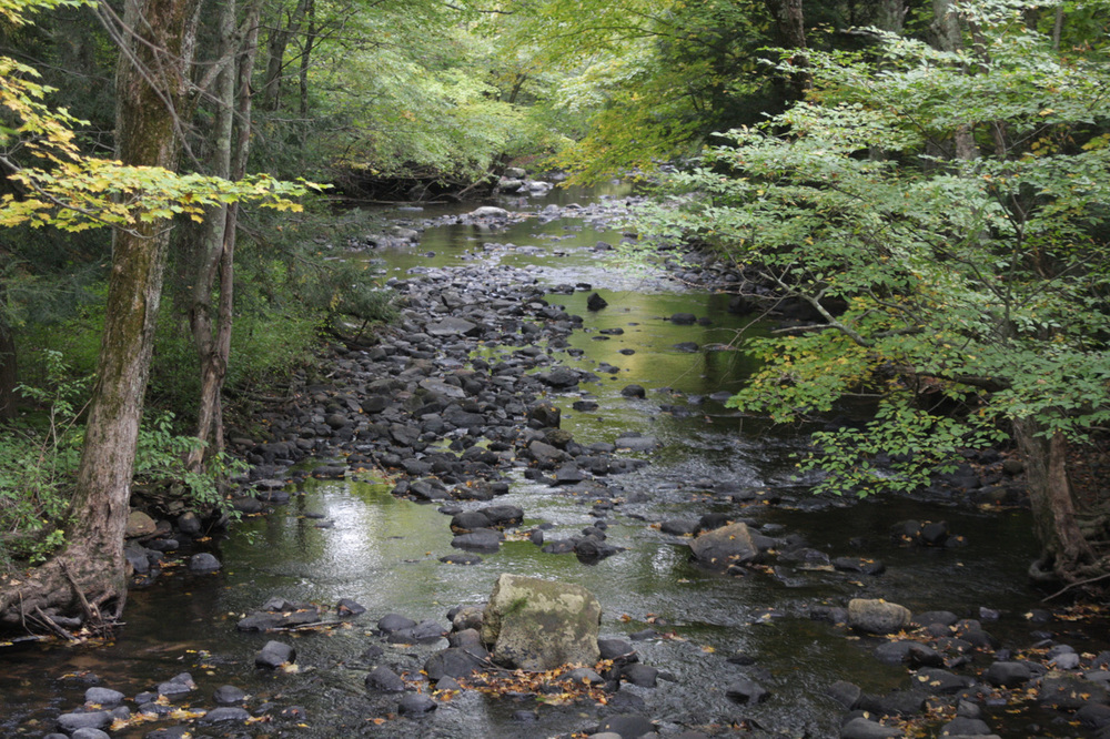 The Fenton River, pictured above, is located in Mansfield, Connecticut. According to a new report, there are 30 permanent water-quality monitoring stations in the state, but an estimated 387 are needed to adequately monitor all streams and rivers. (File Photo/Daily Campus)