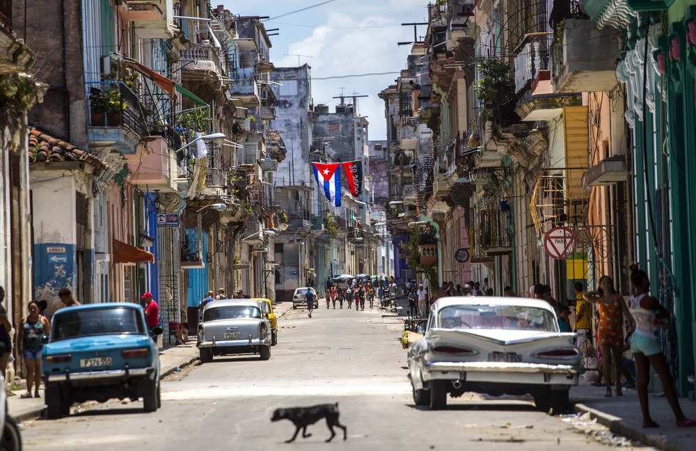 A dog crosses a street adorned with a Cuban flag and a 26-July movement flag in downtown Havana, Cuba, Tuesday, July 26, 2016. (AP Photo/Desmond Boylan)