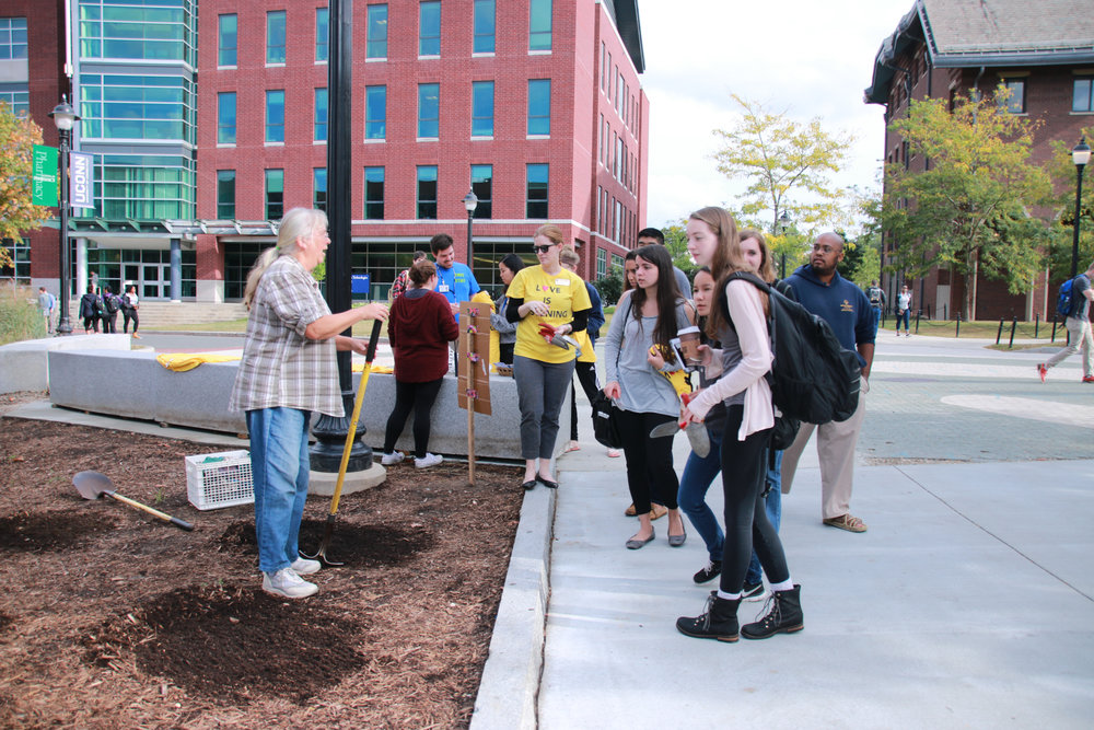 Members of Springs Valley Student Farm invite students to help plant flowers of joy between Laurel Hall and the Union on Tuesday, Sept. 27, 2017 (Yuwei Zhao/The Daily Campus)