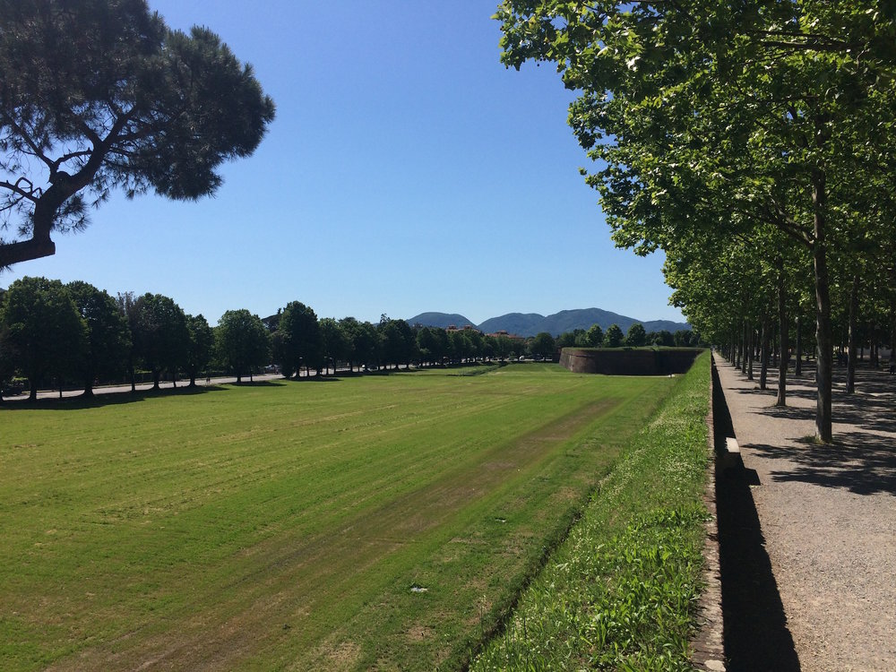 A landscape photo from Lucca, Italy. (Sten Spinella/The Daily Campus)