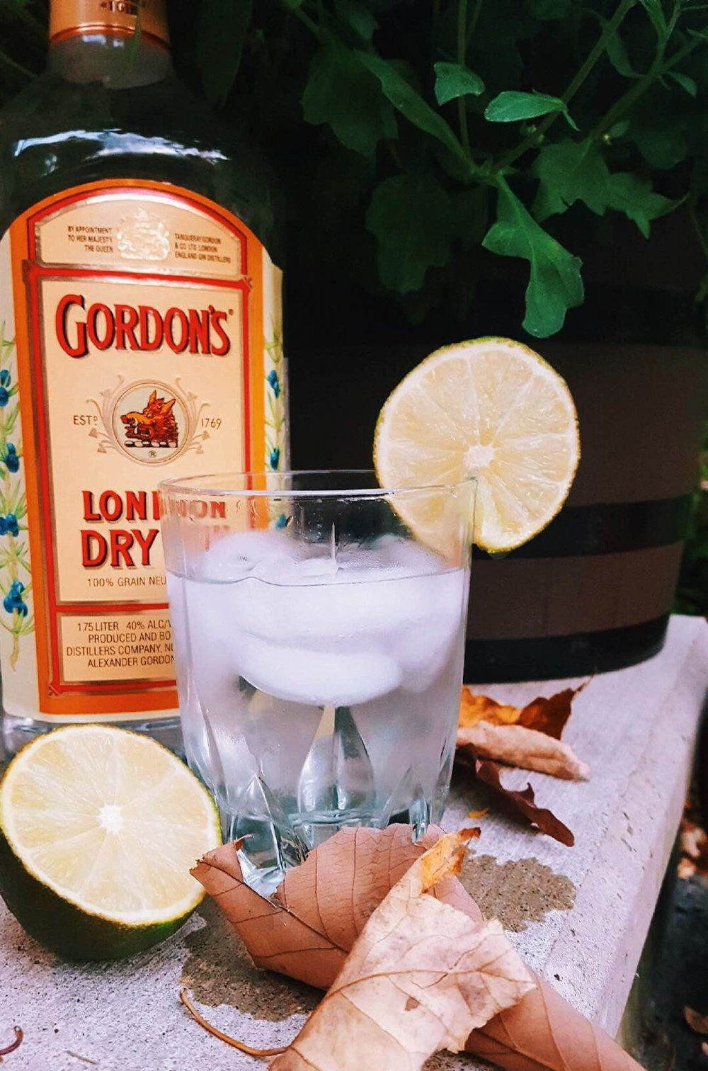 This week's drink of the week features a gin and tonic, in honor of the national gin and tonic day on Oct. 19. (Megan Krementowski/The Daily Campus)