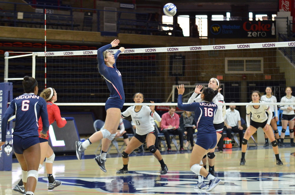 UConn's Hayley Cmajdalka (#14) rises up to spike the ball during a game against Cincinnati on November 13th at Gampel Pavilion. (Akshara Thejaswi/The Daily Campus)