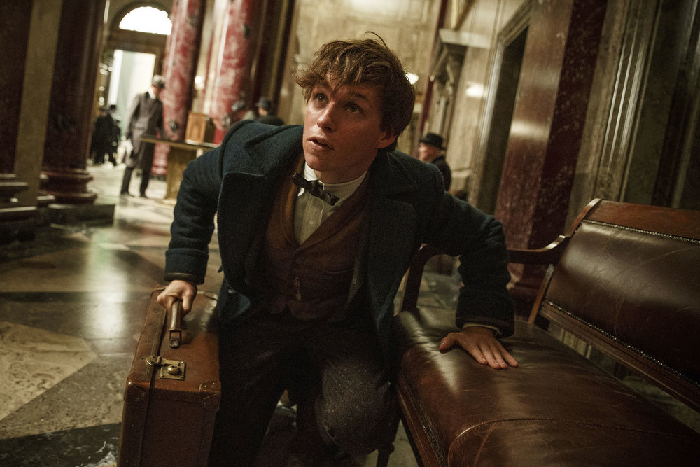 "This image released by Warner Bros. Entertainment shows Eddie Redmayne in a scene from, "" Fantastic   Beasts  and Where to  Find  Them."" (Jaap Buitendijk/Warner Bros. via AP)"