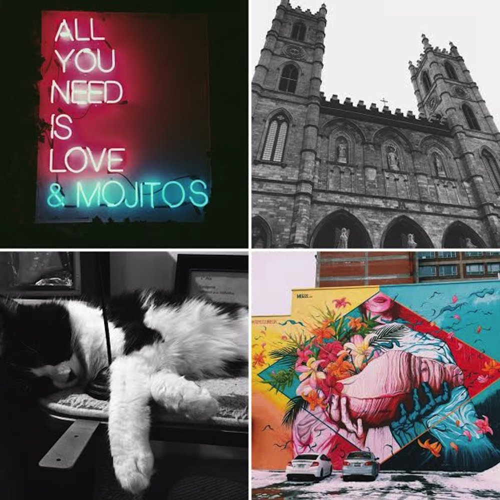 A few photos of the gems found in the city of Montreal. (Angie DeRosa/The Daily Campus)