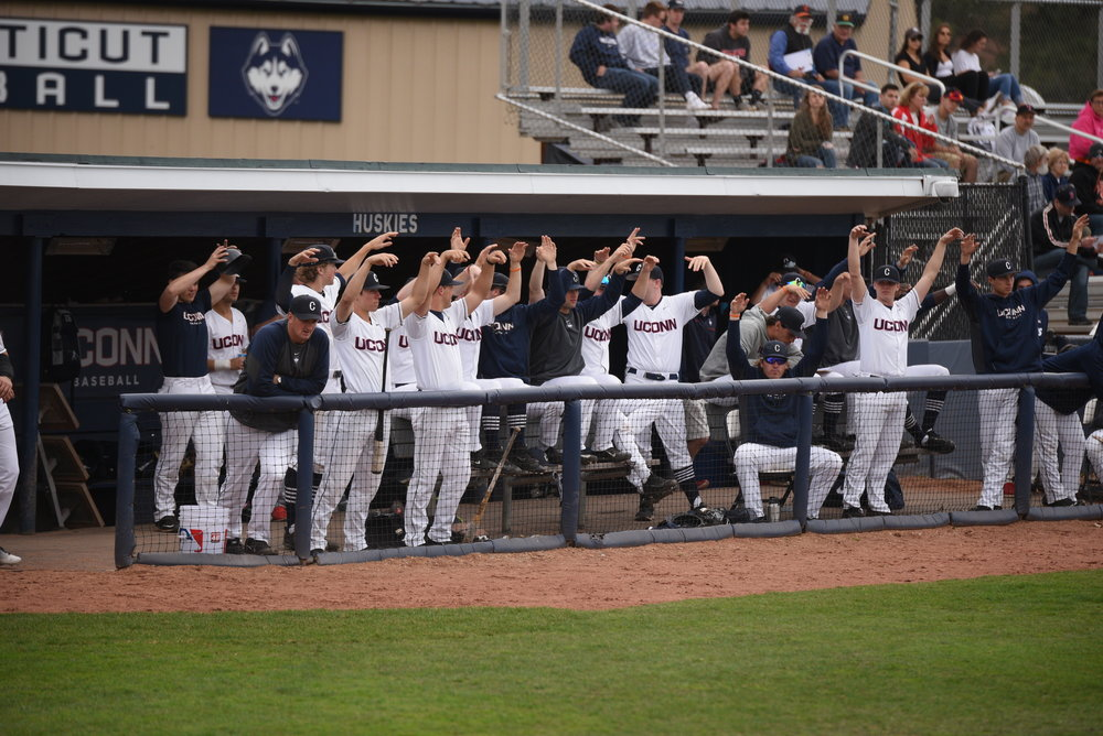 The UConn dugout celebrates during their walkoff win against the Bobcats. (Zhelun Lang/The Daily Campus)