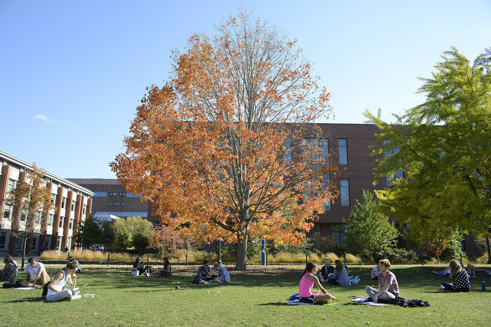UConn students study on the campus green next to the Student Union Oct. 19, 2016. (Jason Jiang/ The Daily Campus)