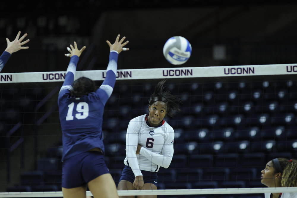 The UConn volleyball team will welcome LSU, the University of Hartford and Iona in the annual Dog Pound Challenge at the Guyer Gym in the Field House on Friday. (Jason Jiang/The Daily Campus)