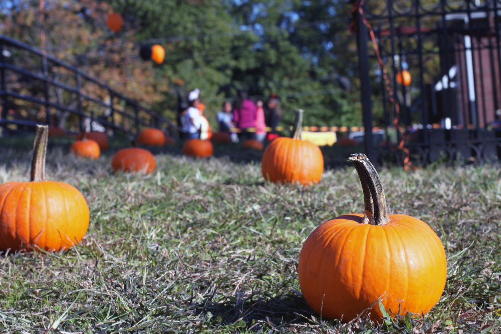 Jack-o-lanterns have been a Halloween staple for 150 years, but the smashing of them is more of a new tradition. (Rutgers Nursing/Creative Commons)