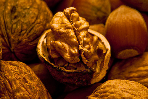 Aside from vitamins, foods like walnuts are rich in Omega3s. (Flickr Creative Commons/La Belle Lumiere)
