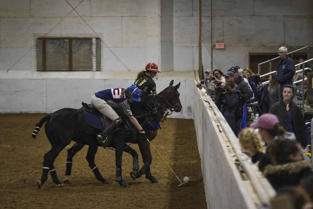 UConn senior Nicole Kula reaches to hit the ball before her opponent. The game of polo can get very close to its audience in the Horsebarn Hill arena. Sometimes fans find themselves face-to-face with horses.