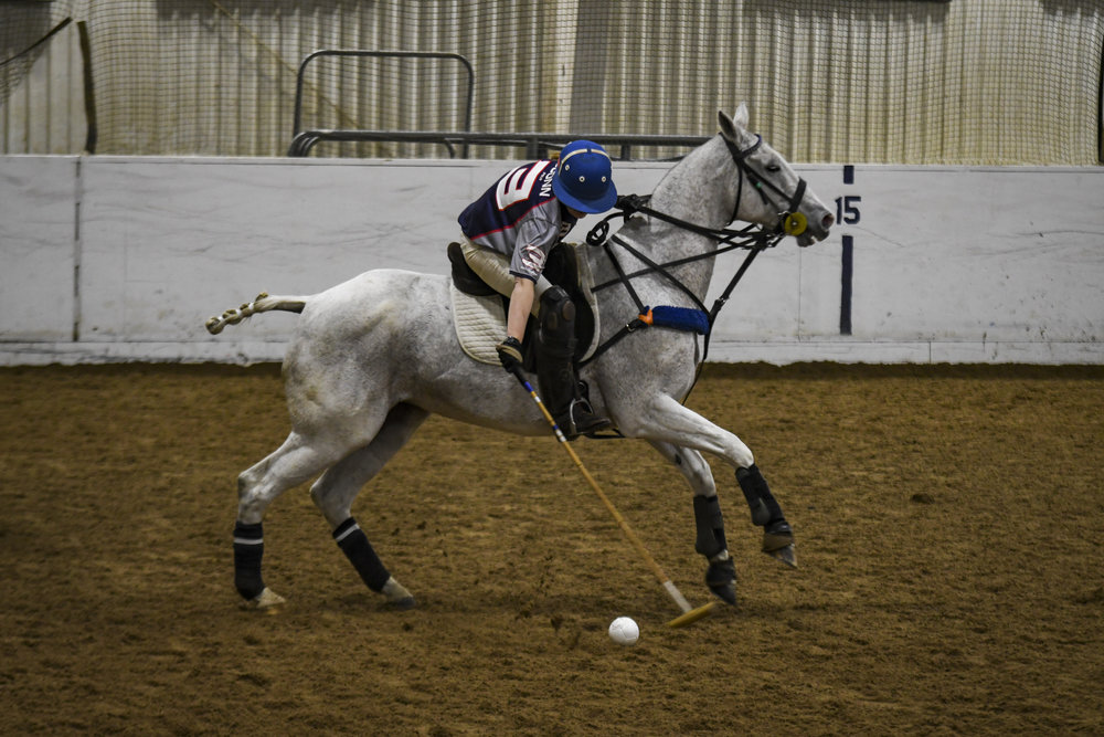 Nicole Kula speeds to the ball on her horse. What sets polo apart from other UConn sports is that while there were only three UConn players on the field, there were also three UConn horses sprinting them to where they could reach the ball and score goals. The UConn Animal Science department owns and looks after these horses.