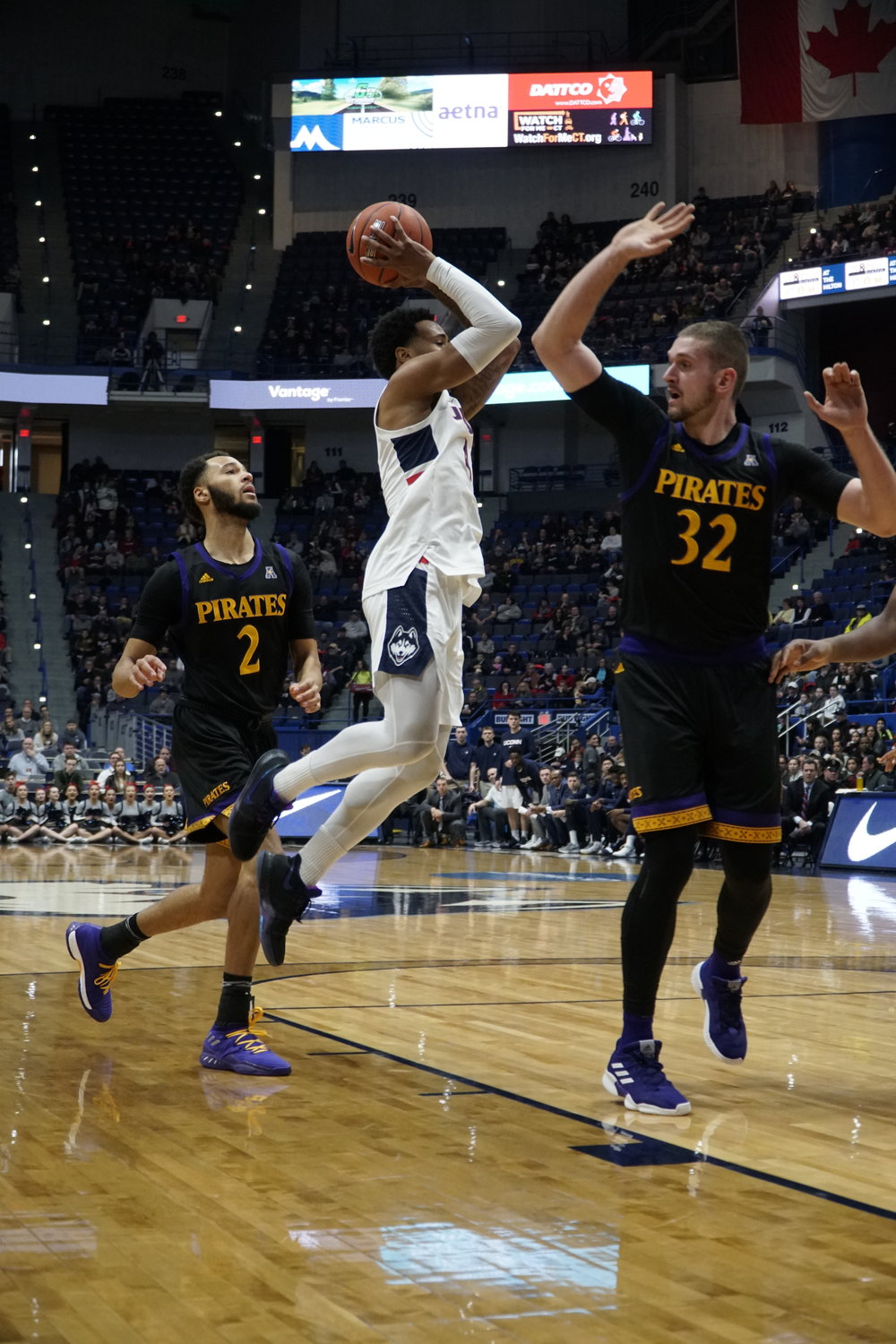 The Huskies take home another win against ECU 76-52, with Josh Carlton (25) leading the team with 20 points and 16 rebounds. Their next home game is on 2/14 against University of Houston. (Photo by Eric Wang/The Daily Campus)
