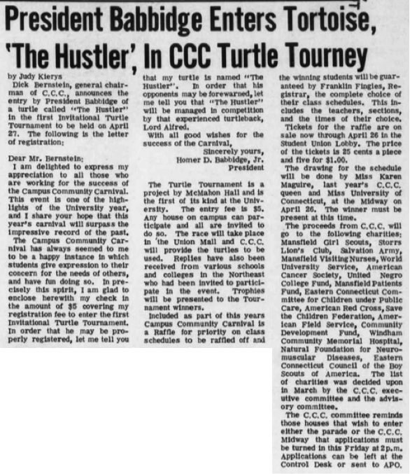 Babbidge's turtle was called The Hustler and was managed by experienced turtle Lord Alfred. (Photo provided by writer)