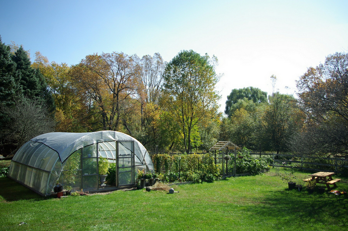 A diverse and functional edible landscape