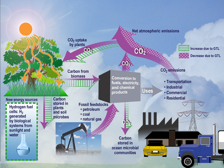 A simple systems ecology map of the carbon dioxide ecosystem.