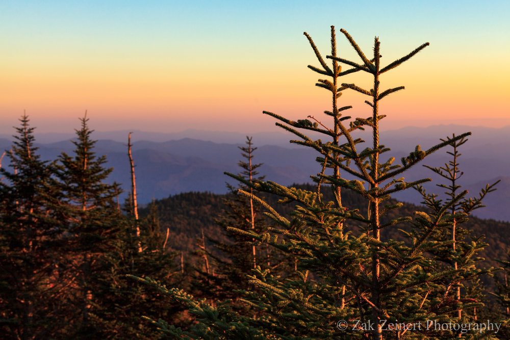Sunrise from Clingman's Dome