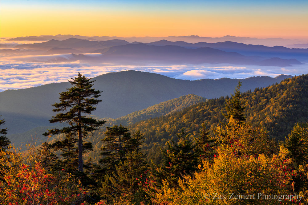 Purple mountain majesty. Sunrise from Clingman's Dome