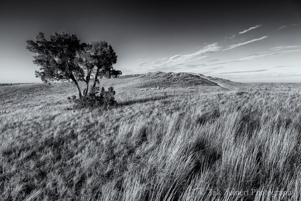Buck Hill in black and white